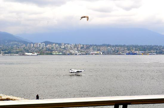 seaplane-at-stanley-park